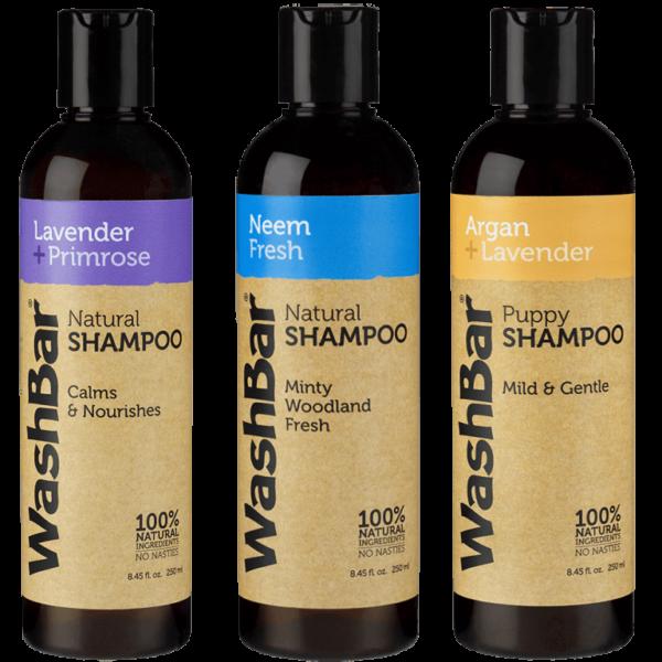 shampoo washbar